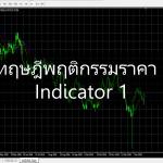 ทฤษฎีพฤติกรรมราคา :Indicator 1