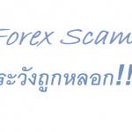 Forex Life : Forex กับการหลอกลวง