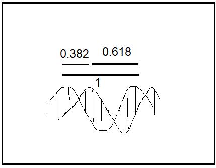Fibonacci คืออะไร