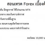 เรียนเทรด Forex ดีไหม?